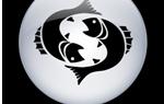 Рыбы: совместимость с другими знаками зодиака по гороскопу