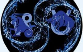 Козерог и телец: совместимость в любви и браке по гороскопу