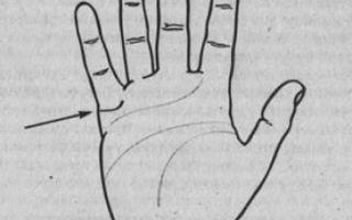 Линия любви (брака) на руке: где находится, расположение и хиромантия, все что следует знать новичку