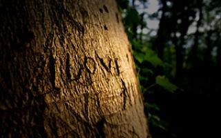 Заговор чтобы встретить любовь: как найти девушку или мужчину, простые и эффективные ритуалы