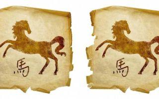 Лошадь и лошадь: совместимость по гороскопу