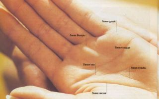 Линия брака (любви) на руке: хиромантия у женщины, значение и влияние судьбоносной черты
