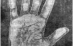 Холм луны на руке: линии, знак ведьмы, хиромантия