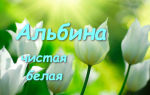Альбина (Аля): разговорные варианты и значение имени, характер и судьба