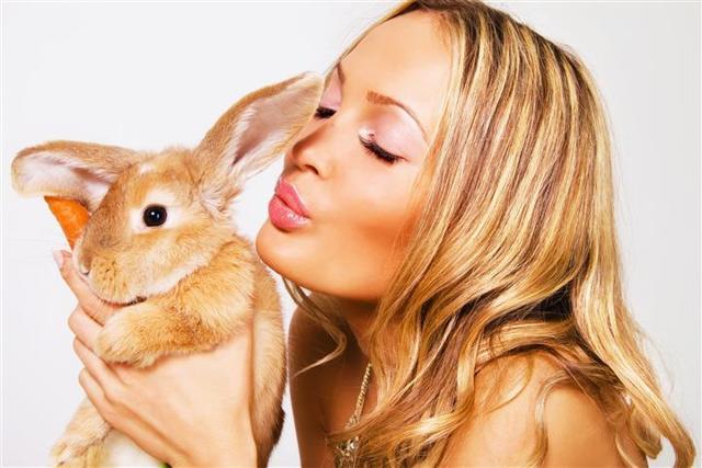 Кролик и кролик (кот): совместимость по гороскопу