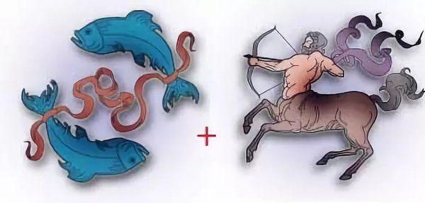 Мужчина-Стрелец: совместимость с другими знаками по гороскопу