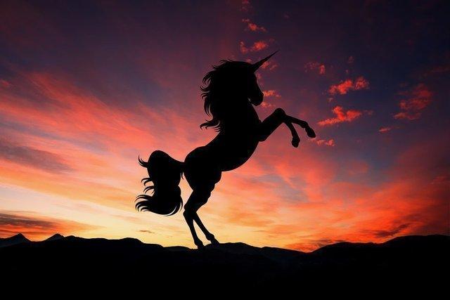 Единороги (мифология): где живут, как выглядят, настоящие