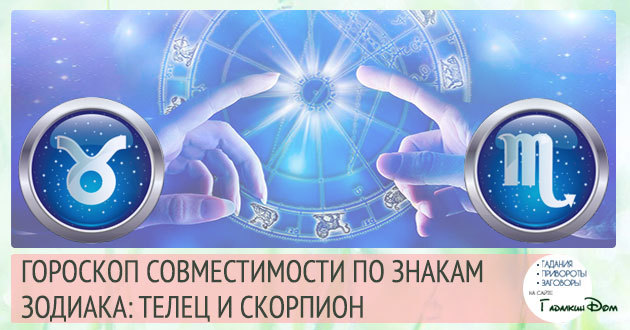 Телец и Скорпион: совместимость в любви и браке по гороскопу