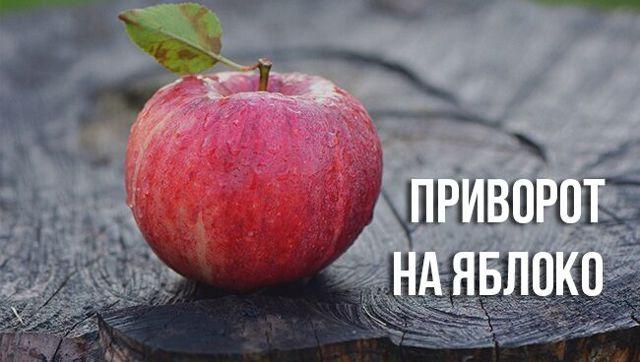 Присушка на яблоко: в домашних условиях на красное, последствия