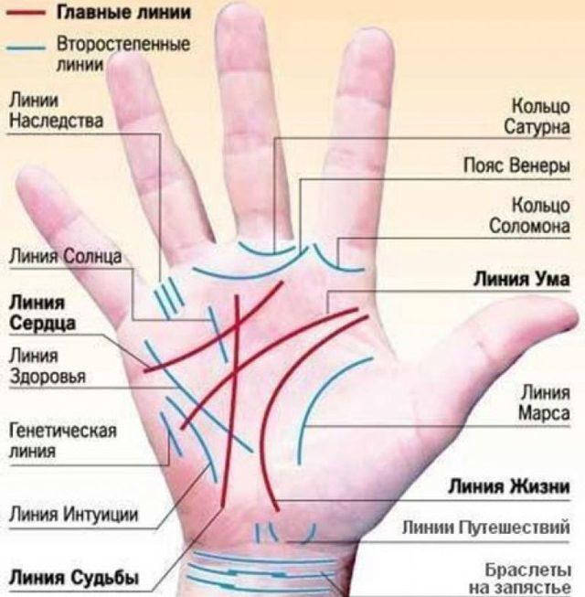 Линия детей на руке: хиромантия, у женщины, расшифровка