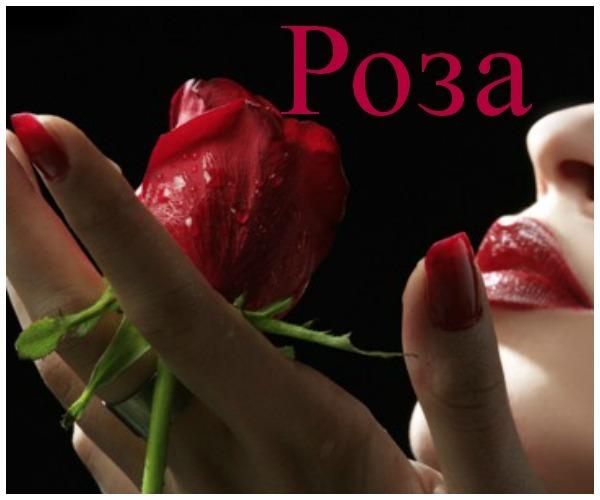 Роза (Розалия, Розалина): значение имени, характер и судьба, происхождение и толкование, совместимость в любви