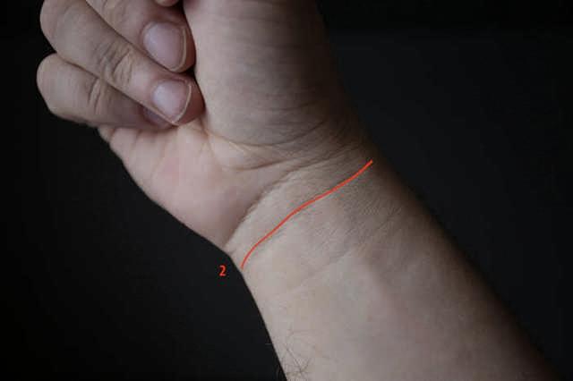 Линии на запястье (браслеты): значение, у женщин и мужчин, хиромантия