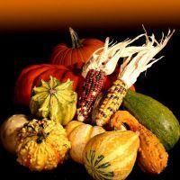 Русские народные приметы на урожай: на весь год по сезонам (зимой, весной, летом, осенью)