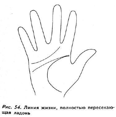 Как определить возраст по линии жизни: по годам, на правой руке, хиромантия