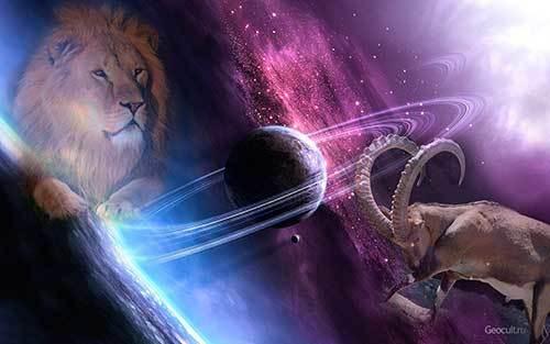Лев и козерог: совместимость в любви, по гороскопу