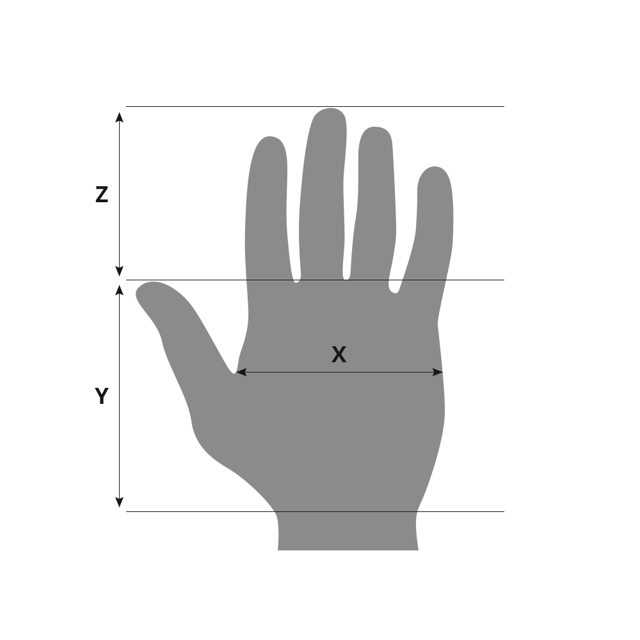 Типы рук: хиромантия, женских, по стихиям