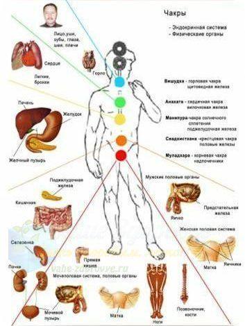 Чакры и болезни: таблица, очищение, если болят, как восстановить и вылечить самостоятельно