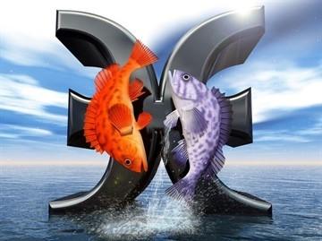 Водолей и Рыбы: совместимость в любовных отношениях