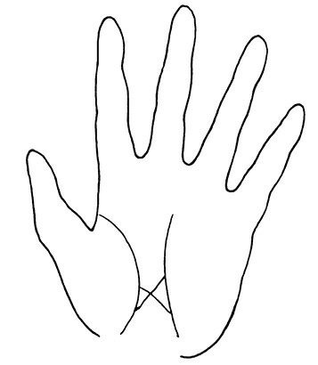 Крест на линии жизни: правая рука, что значит, хиромантия