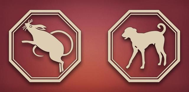 Собака и Крыса: совместимость по гороскопу в любви