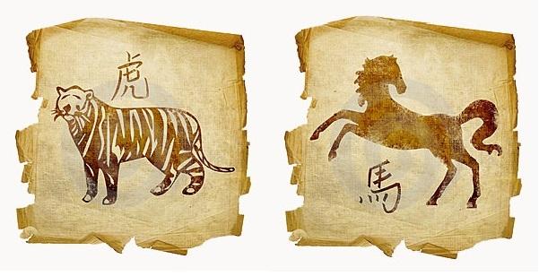 Тигр и Лошадь: совместимость в любви и браке по гороскопу