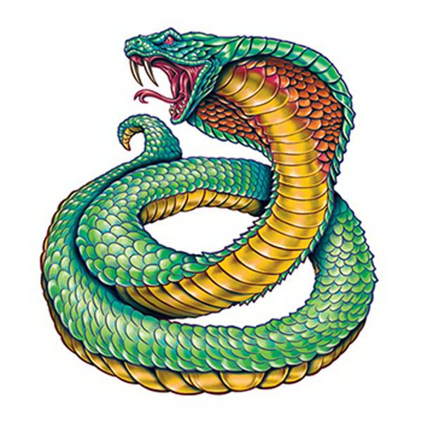 Змея и обезьяна: совместимость в любви и браке
