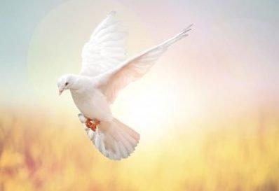 Анастасия (Настя, Ася): значение имени, характер и судьба, происхождение и толкование, совместимость в любви