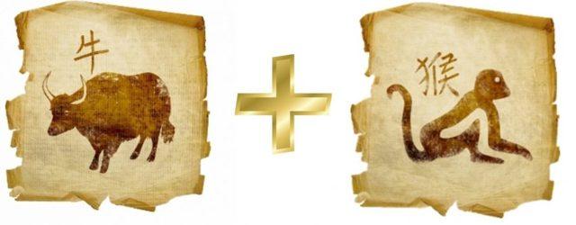 Бык и Обезьяна: совместимось в браке, гороскоп