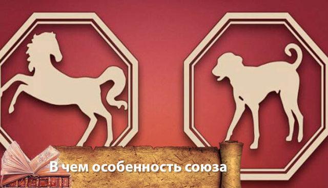 Собака и Лошадь: совместимость в браке и любви по гороскопу