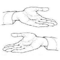 Чакры на руках (ладонные): что это такое и как пользоваться