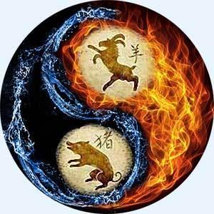 Кабан и коза: совместимость в любви, гороскоп