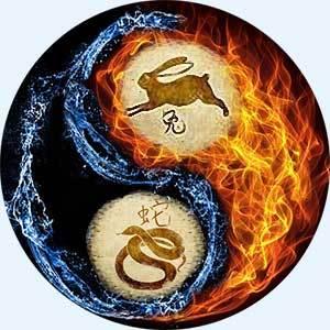 Змея и кролик: совместимость по гороскопу