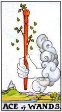 Туз Жезлов (1 Посохов, Булав): значение аркана Таро, сочетания с другими картами, толкование в гаданиях и раскладах, перевернутый и прямой