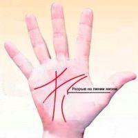 Короткая или длинная линия жизни: что означает, на обеих руках, расшифровка