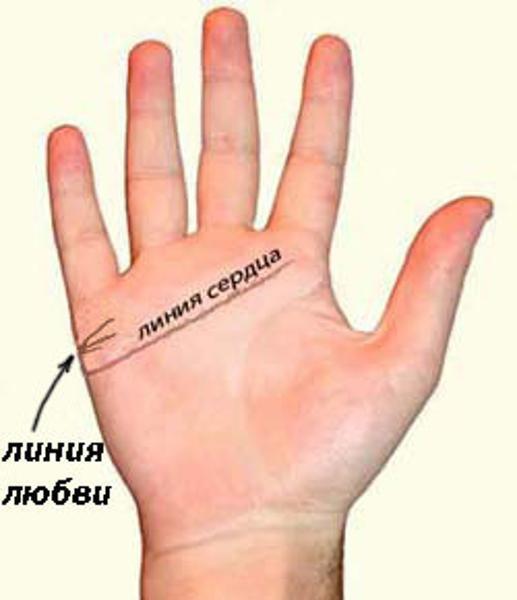 Линия любви (брака) на руке: где находится, расположение, хиромантия