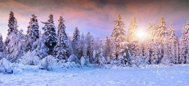 Татьянин день 25 января 2020 (праздник российского студенчества): народные приметы о погоде и урожае, обычаи и традиции для студентов