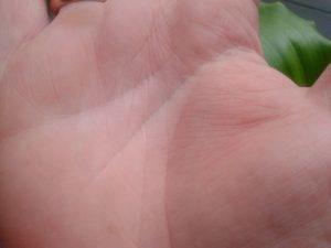 Треугольник на линии жизни: правая и левая рука, что означает, в конце
