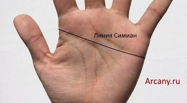 Линия судьбы короткая: правая и левая рука, значение, хиромантия