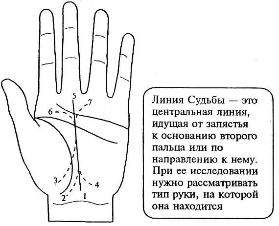 Короткая линия ума (головы): правая и левая рука, значение, хиромантия