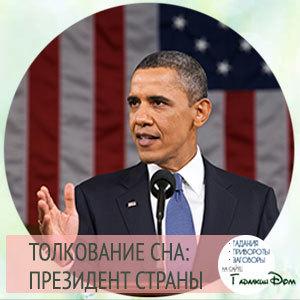 Видеть во сне президента (Путина): к чему по соннику, что означает разговаривать, танцевать, целовать, подать руку, у себя в гостях, пить чай