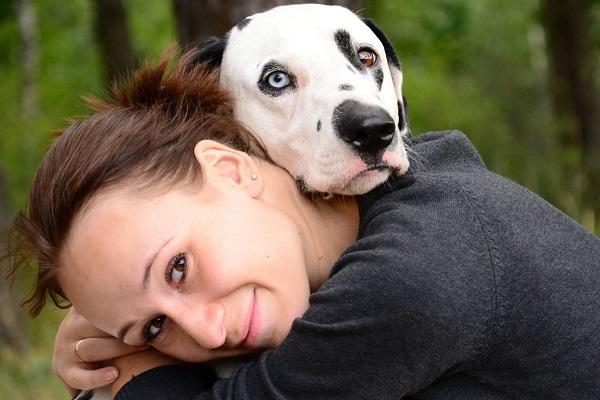 Душа собаки после смерти: откровения ангелов, есть ли у них душа