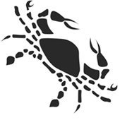 Мужчина-Рак: совместимость с другими знаками по гороскопу