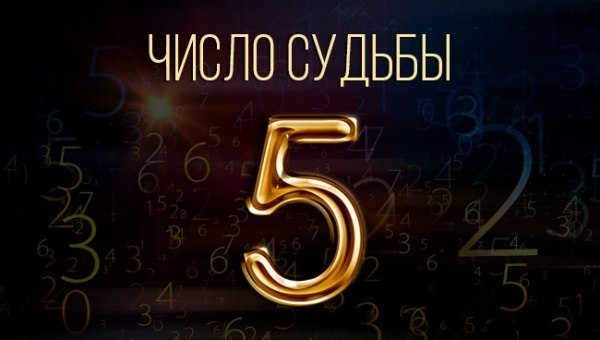 Число судьбы 5: женщина, мужчина, значение в нумерологии, характеристика