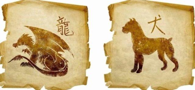Собака и Дракон: совместимость в любви и браке