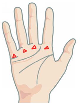Треугольник на ладони: хиромантия, что означает, большой