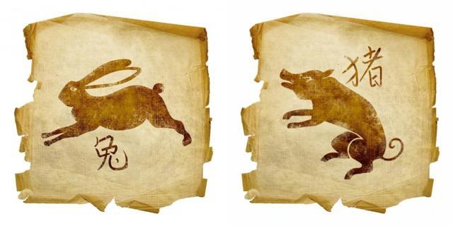Кабан (Свинья) и Кролик: совместимость по гороскопу