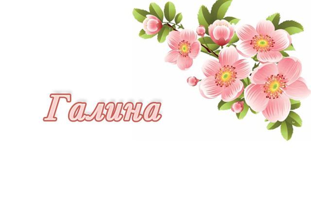 Галина (Галя): значение имени, характер и судьба, происхождение и толкование, совместимость в любви