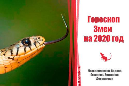 Гороскоп на 2020 год по году рождения для женщины-Змеи: что ждет в любви и отношениях, деньгах и карьере, прогноз от Глоба и Володиной