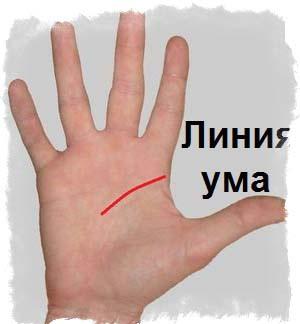 Линия ума (головы) раздваивается: двойная, заканчивается вилкой, ответвление