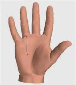 Линия Аполлона: на руке, ладони, хиромантия